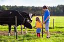 A maturação do microbioma intestinal durante o primeiro ano de vida contribui para o efeito fazenda protetor sobre a asma infantil